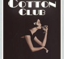 Cotton-club