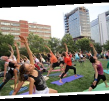Yoga-high-line