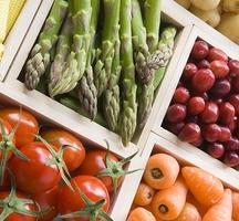 Nyc-veg-food-fest-2015