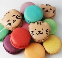 Macaron-parlour